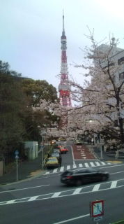 http://tokiko.fine.to/2014%E6%98%A5.jpg